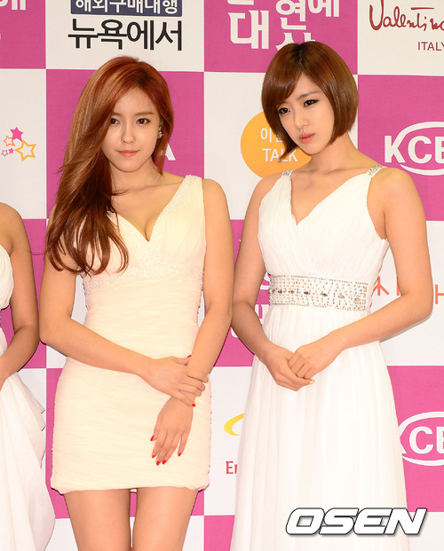 t-ara at 20th Korea cultural entertainment Awards pictures (11)