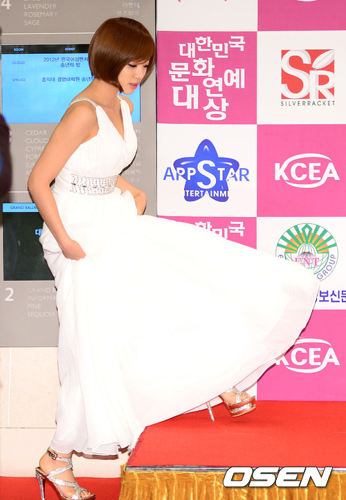 t-ara at 20th Korea cultural entertainment Awards pictures (15)