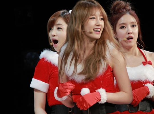 t-ara dxmas party with t-ara pictures (22)