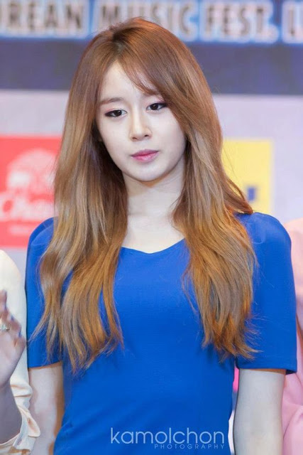 t-ara korean music wave bangkok presscon (12)