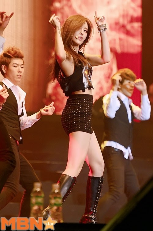 hong kong concert t-ara (17)