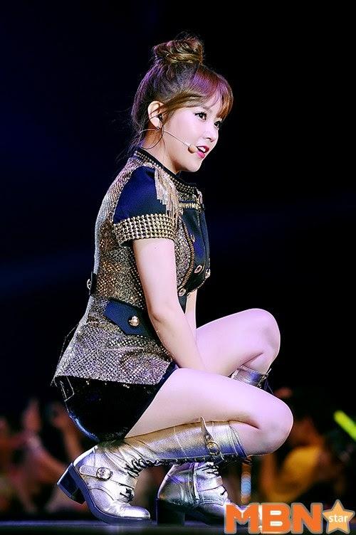 hong kong concert t-ara (28)