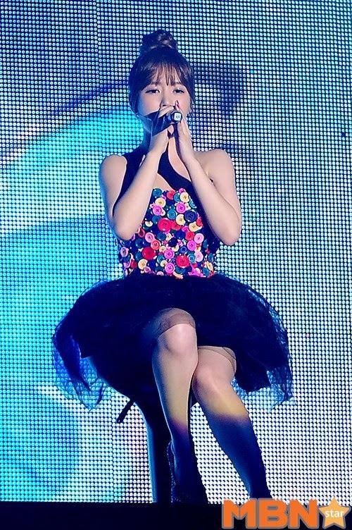 hong kong concert t-ara (3)